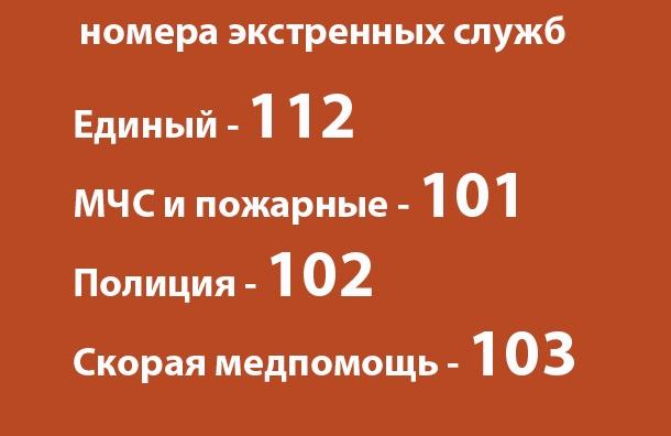 Бабы Яги единая справочная скорой помощи иркутск школа свой
